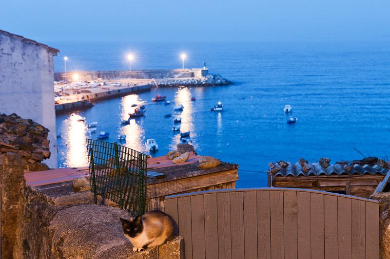 Vista del puerto desde el barrio de San Roque